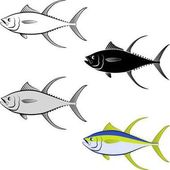clip art illustration of tuna fish and line art