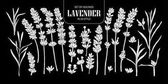 Set of isolated white silhouette Lavender in 20 styles Cute han