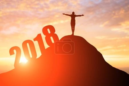 silhouette of businesswoman standing  on the moutain with 2018 year