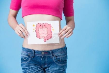 Photo pour Femme avec carte intestin sanitaire sur le fond bleu - image libre de droit