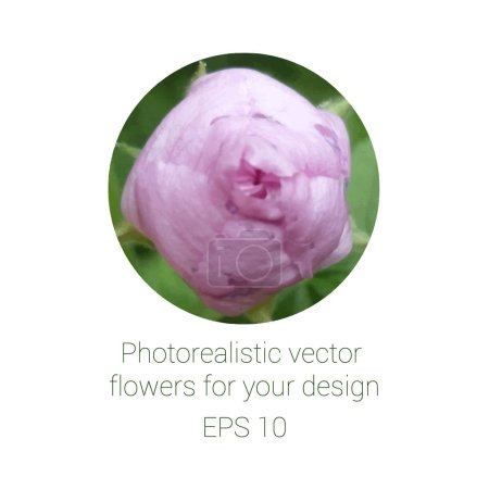 Illustration for Photorealistic flower in circle, vector illustration - Royalty Free Image
