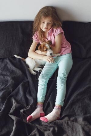 Photo pour Accueil portrait de petite fille étreindre avec chiot de chien Jack Russell Terrier sur le mauvais contre le mur blanc - image libre de droit