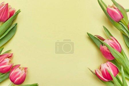 Frame with tulips on yellow background. Flower composition. Flat lay.