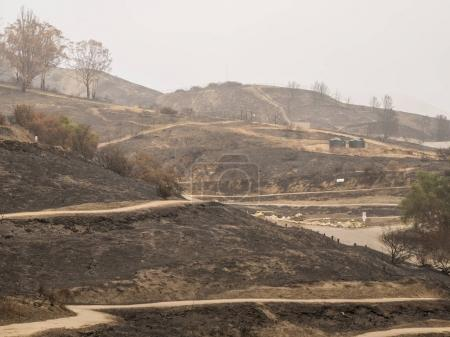 wide angle view of destroyed Grant Park  from Thomas Fire in California, Ventura, California