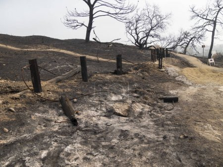 charred and severely damaged post fence in public park