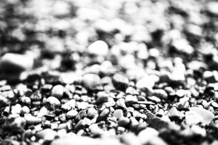 Photo pour Affiche noir et blanc. texture de caillou sur la rive du fleuve - image libre de droit