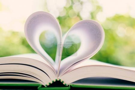 Opened book with heart shaped page on blurred natural green background, extremely DOF and added colour filter for education, Valentine's day and love concept