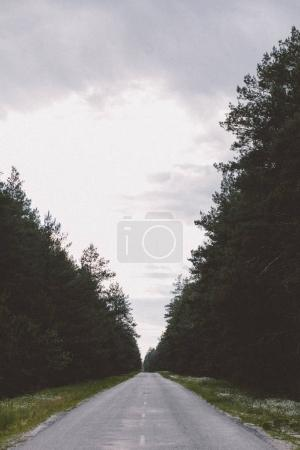 View of countryside road in forest