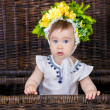 Portrait of a cute baby girl on a light background...