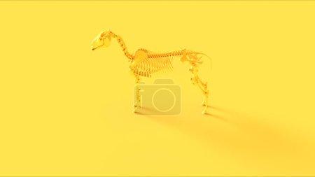 Photo pour Modèle anatomique du système squelettique du cheval jaune - image libre de droit