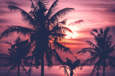 tropical sunset over sea with coconut palm trees, Thailand