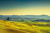 Tuscany sunset. Trees, rolling hills and meadows. Italy.