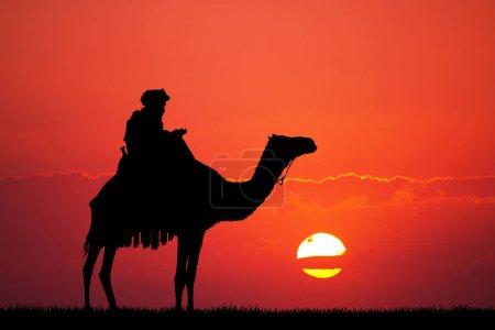 Photo pour Illustration de chameau dans le désert au coucher du soleil - image libre de droit