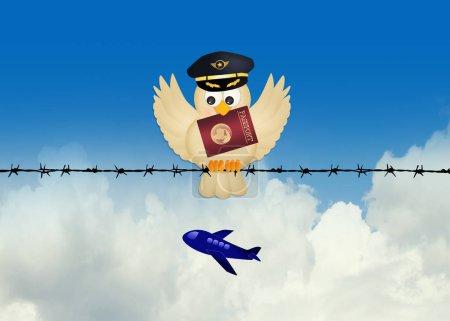 Pilot bird with passport on wire