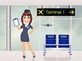 A repülőtéren hostess lány