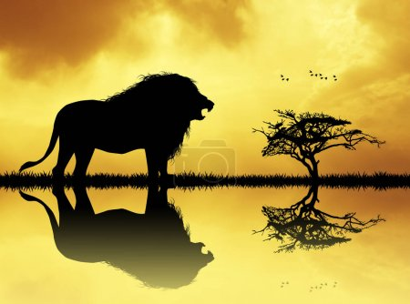 Lion silhouette on river at sunset