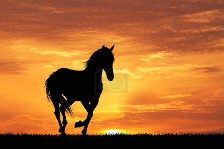 Galloping horse at sunset