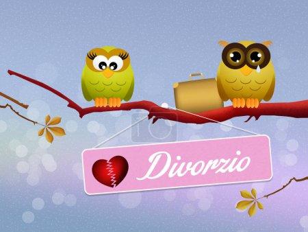 Photo pour Illustration de hiboux divorcés sur branches - image libre de droit