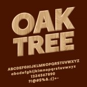 Vector Oak Tree textured Sign Set of Wooden Alphabet Lretters Numbers and Punctuation Symbols