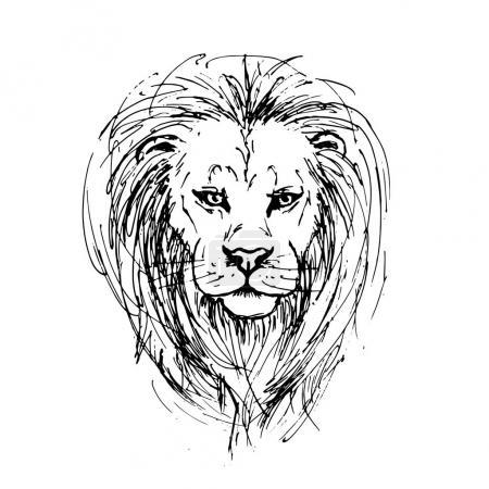 Sketch by pen of a lion head
