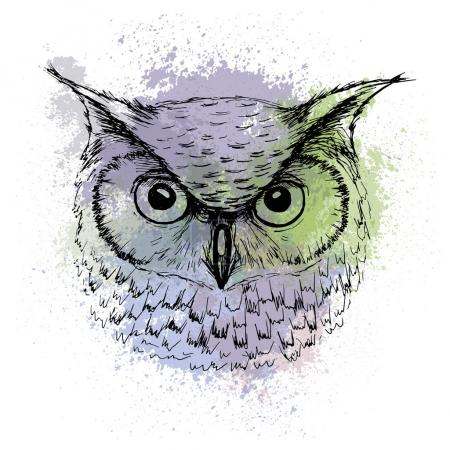 Vector sketch of owl head on a background of colored watercolor