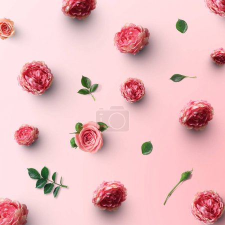 beautiful rose flowers with green leaves on pink background