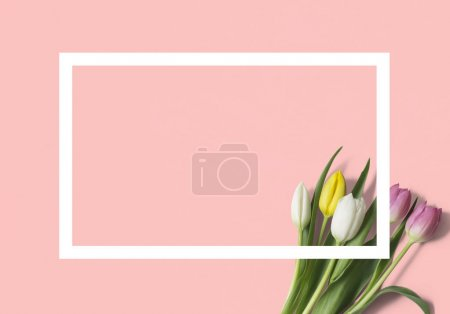 Top view of tulips and rectangle on orange background, geometry concept