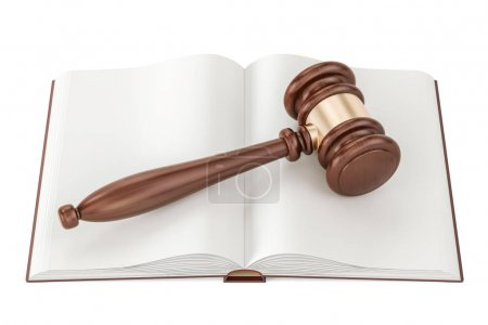 Opened blank book with gavel, 3D rendering