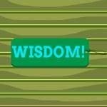 Conceptual hand writing showing Wisdom. Concept me...