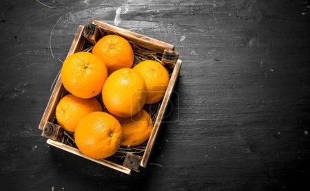 Fresh oranges in an old box.