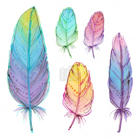 hand drawing colorful feathers.