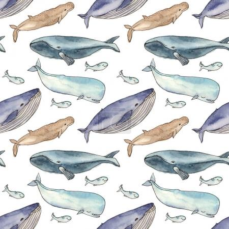 watercolor pattern whales family.