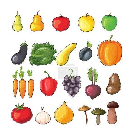 Illustration pour Ensemble de fruits et légumes à vecteur plat lumineux. Aliments sains biologiques frais. Ensemble végétarien - image libre de droit