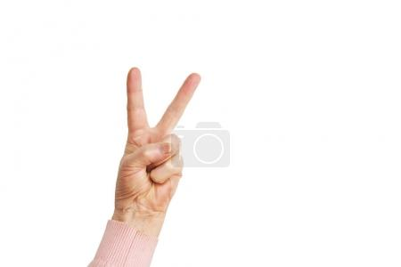 Senior female gesture language, hands signs isolated on solid white background. Old female in her seventies / eighties showing arms forearms.