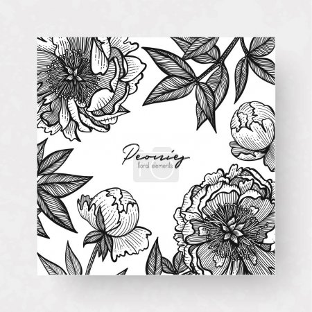 Graphic detailed cards with peony and leaves. Linear vector leaves for your design greeting cards, postcards, flyer, packing, invitations and background.
