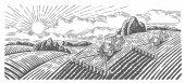 Rural farm landscape with tractors vector illustration
