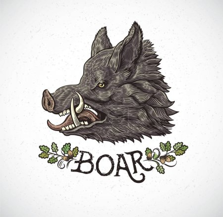 Boar head in graphic style