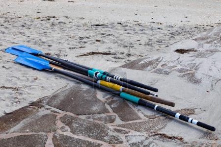 oars on sandy beach