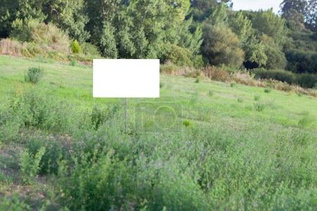 green meadow with blank signboard