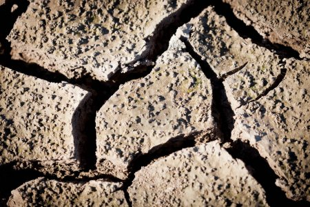 soil cracked by drought, symptom of global warming