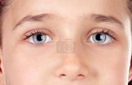 Photo for Blue eyes of cute little boy - Royalty Free Image