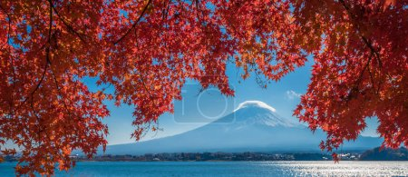 Mount Fuji and autumn leaves