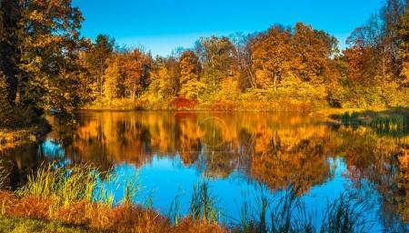 autumn landscape,  fall scenery