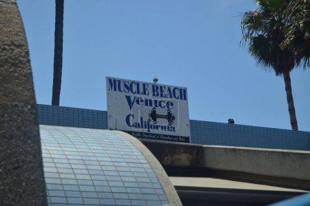 Мышцы Пляже В СантаМонике