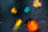 Dark green, orange, blue, yellow colorful abstract design, texture. Beautiful backgrounds.