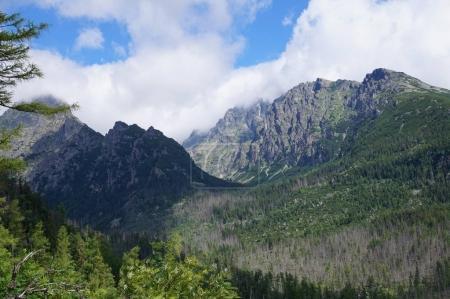 Nature Slovakia Tatras
