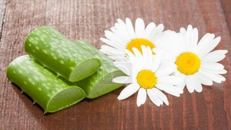 composition of aloe and chamomile