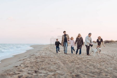 Photo for Family holding hands and walking with dog at seaside - Royalty Free Image