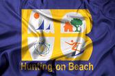 "Постер, картина, фотообои ""Размахивая флагом Хантингтон-Бич, Калифорния, США"""