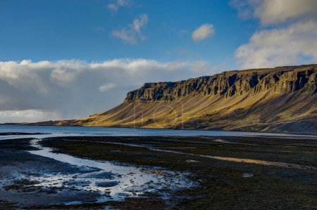 Meadows with black beach in Iceland during golden hour sunset